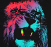 Bob Marley / Colored Lion Tee (black)
