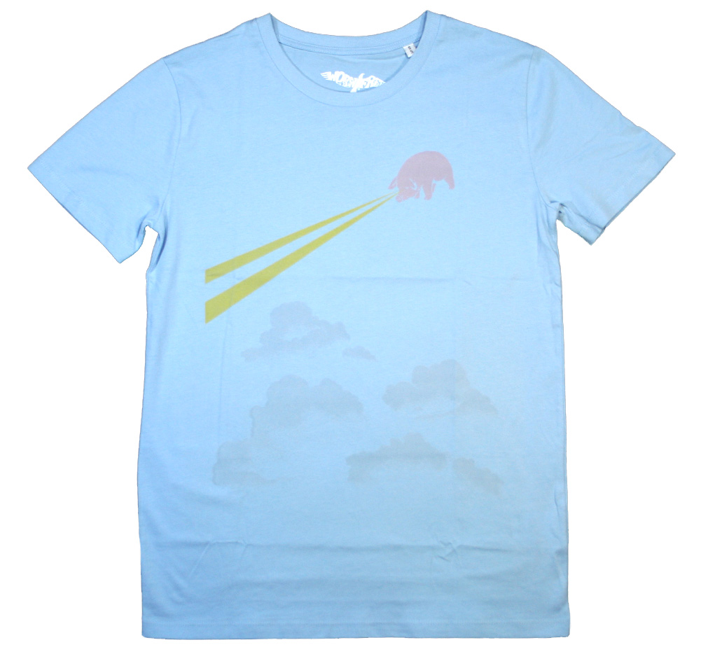 【Worn Free】 David Gilmour / Pink Floyd European Tour 77 Tee (Sky Blue)