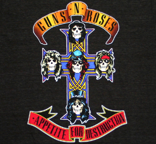 Guns N' Roses / Appetite for Destruction Tee (Charcoal)