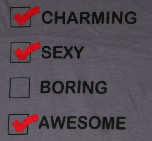 The Lonely Island / Charming Sexy Boring Awesome Tee (Womens) (Charcoal)