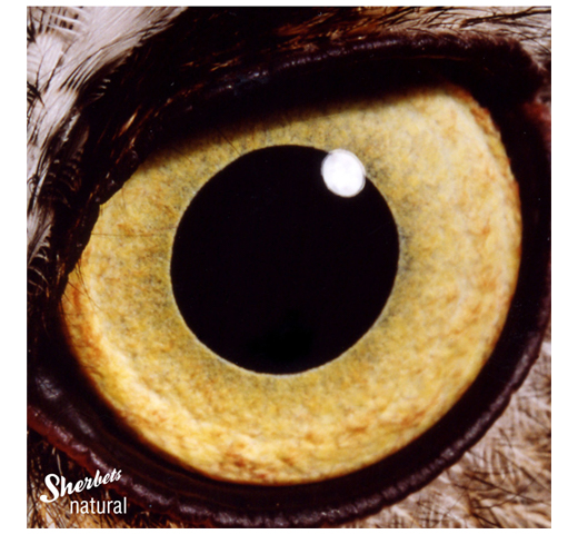 Sherbets / Natural [CD]
