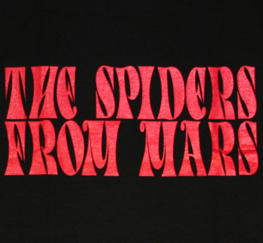 David Bowie / The Spiders From Mars Tee (Black)