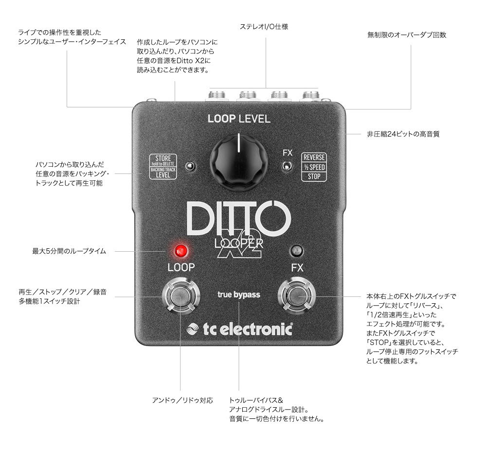 [tc electronic] Ditto X2 Looper
